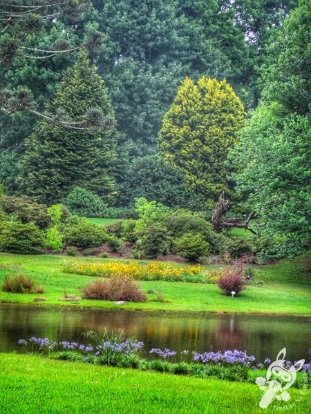 Jardim Botânico de Faxinal do Céu | Faxinal do Céu - Pinhão - Paraná - Brasil | FredLee Na Estrada