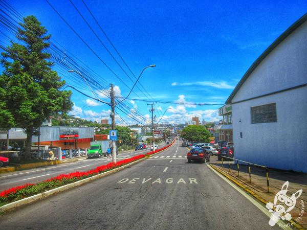 Garibaldi - Rio Grande do Sul - Brasil | FredLee Na Estrada