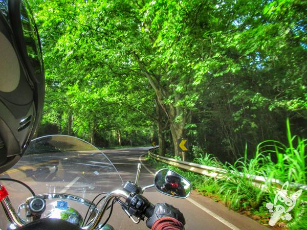 Rota Romântica - Rodovia BR-116 - Rio Grande do Sul - Brasil | FredLee Na Estrada