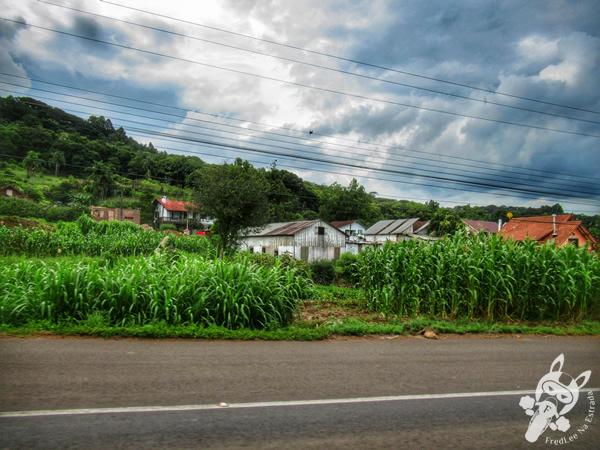 Rota Romântica - Rodovia RS-235 - Rio Grande do Sul - Brasil | FredLee Na Estrada