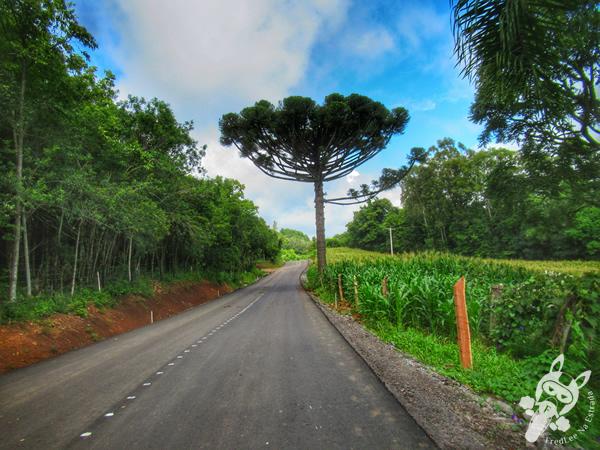 Gramado - Rio Grande do Sul - Brasil | FredLee Na Estrada
