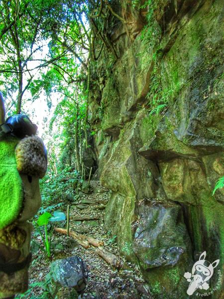 Trilha do Rochedo - Parque da Cascata | Ipira - Santa Catarina - Brasil | FredLee Na Estrada