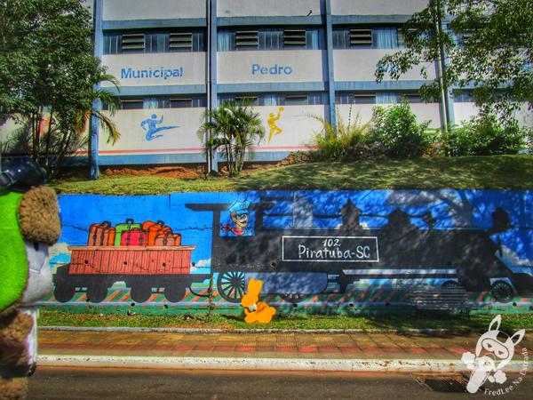 Piratuba - Santa Catarina - Brasil | FredLee Na Estrada