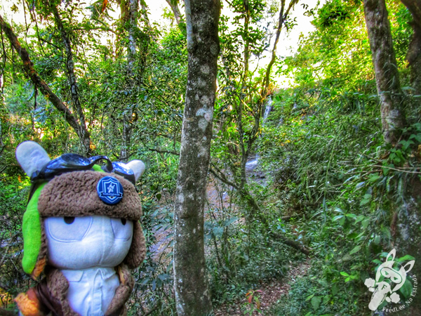 Cascata do Monge | Piratuba - Santa Catarina - Brasil | FredLee Na Estrada