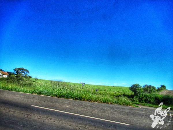 Rodovia Transbrasiliana - Rodovia BR-153 | FredLee Na Estrada