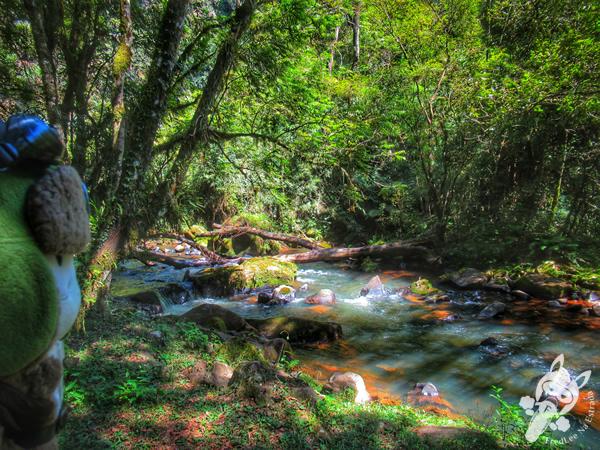 Parque Salto Santa Rosa - Barreiro | Tibagi - Paraná - Brasil | FredLee Na Estrada