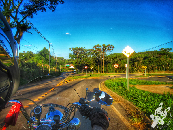 Tibagi - Paraná - Brasil | FredLee Na Estrada