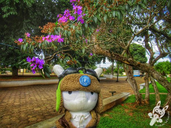 Caminho do Guataçará | Tibagi - Paraná - Brasil | FredLee Na Estrada