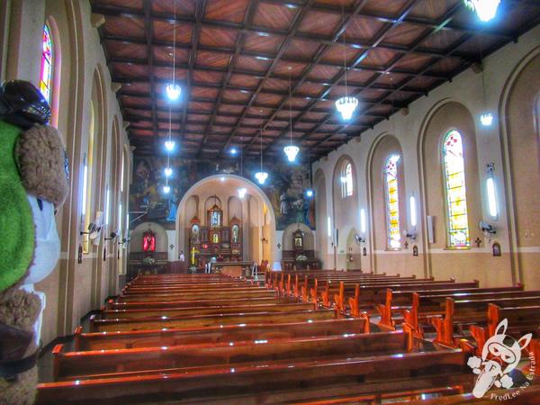 Igreja Matriz Nossa Senhora dos Remédios | Tibagi - Paraná - Brasil | FredLee Na Estrada