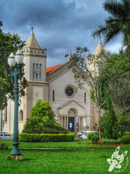 Igreja Matriz Nossa Senhora dos Remédios - Praça Leopoldo Mercer | Tibagi - Paraná - Brasil | FredLee Na Estrada