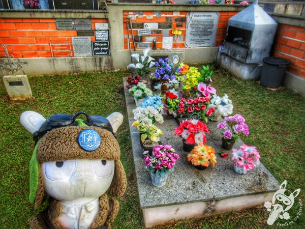Cemitério São Josafat   Prudentópolis - Paraná - Brasil   FredLee Na Estrada