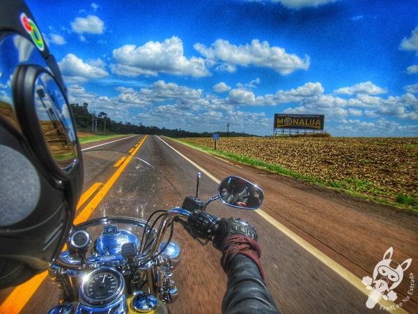 Grande Estrada - Rodovia BR-277   FredLee Na Estrada