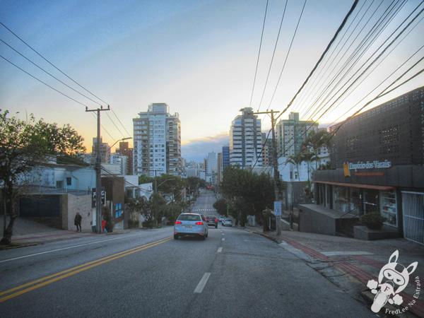 Avenida Rio Branco | Florianópolis - Santa Catarina - Brasil | FredLee Na Estrada