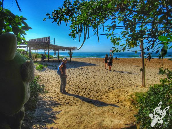 Trilha da Lagoinha do Leste   Florianópolis - Santa Catarina - Brasil   FredLee Na Estrada