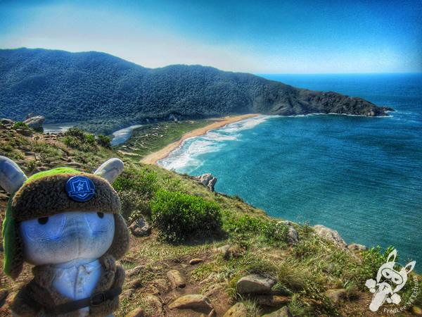 Trilha do Morro da Coroa - Praia da Lagoinha do Leste   Florianópolis - Santa Catarina - Brasil   FredLee Na Estrada