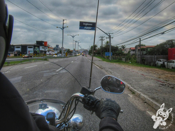Rodovia SC-403 | Florianópolis - Santa Catarina - Brasil | FredLee Na Estrada