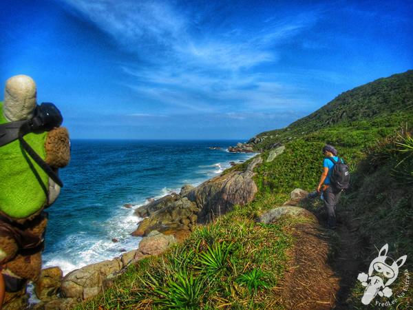 Trilha da Praia do Santinho à Praia de Moçambique | Florianópolis - Santa Catarina - Brasil | FredLee Na Estrada