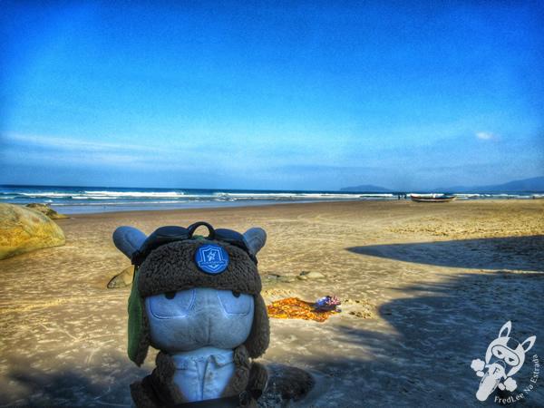 Praia de Moçambique | Florianópolis - Santa Catarina - Brasil | FredLee Na Estrada