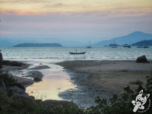 Estrada Haroldo Soares Glavan | Florianópolis - Santa Catarina - Brasil | FredLee Na Estrada