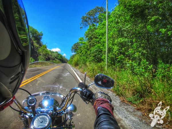 Rodovia RS-478   FredLee Na Estrada
