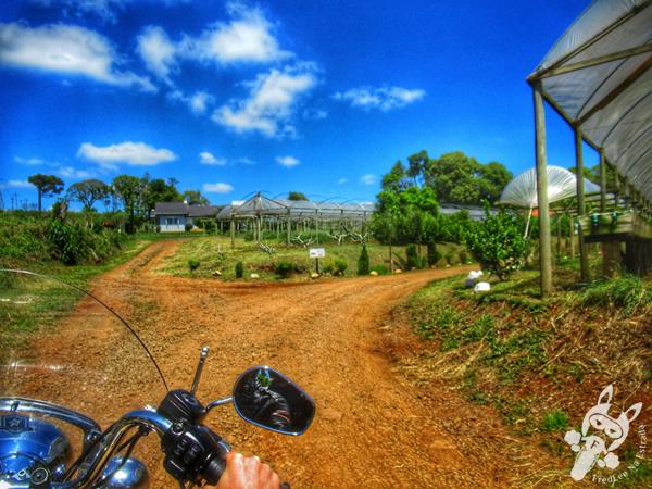 Chácara Brilho do Sol   Machadinho - Rio Grande do Sul - Brasil   FredLee Na Estrada